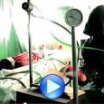 """GUADAÑA «Deryaz Parte II: Adrenalina» Nuevo Videoclip """"Deryaz Part. II: Adrenalina"""" es el tema elegido para ser el primer videoclip extraído de «Deryaz», lo último de Guadaña. Créditos de Producción […]"""