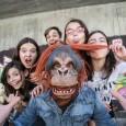 FURIOUS MONKEY HOUSE agotan las entradas para su concierto en Madrid Las buenas noticias de Furious Monkey House no se acaban. El grupo formado por niños de entre 11 y […]