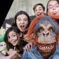 Furious Monkey House regresa a Madrid con un concierto el 29 de enero en el Inverfest Será a las 18h en el Teatro Circo Price Tras el llenazo en el […]
